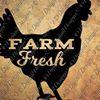 Fair & Square Farm