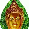 Buddhism & Humanity