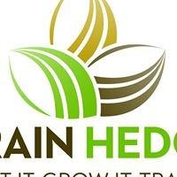 Grain Hedge