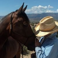 In Sync with Horses, LLC