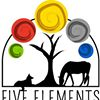 Five Elements Veterinary Alternatives