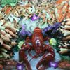 Lobster Lady Seafood Market & Bistro