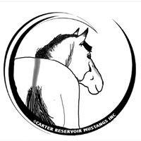 Carter Reservoir Mustangs Inc, DBA Carter Reservoir Mustang Registry
