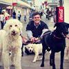 Precious Paws Animal Hospital - Bethany Beach