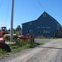 Blue Barn Farms