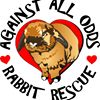 Against All Odds Rabbit Rescue