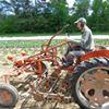 Littlewood Farm,  LLC