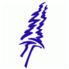 Adair Tree Care Ltd.