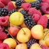 Ferris Farms Fruit Stand