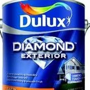 Dulux Color Your World