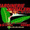 Jardinerie Animalerie Du Val De L'eyre