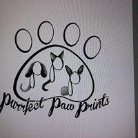 Purrfect Paw Prints