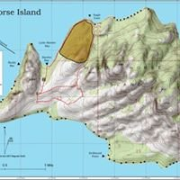 Wild Horse Island Tours