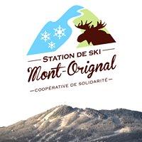 Mont-Orignal, coopérative de solidarité