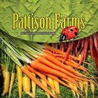 Pattison Farms Black Creek BC