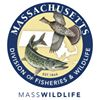 Massachusetts Division of Fisheries & Wildlife