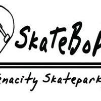 Tenacity Skatepark