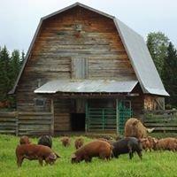 Big Bear Ranch
