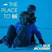Jobs at Blue Mountain