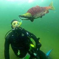 Copper Island Diving LTD