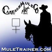 Cameron Mule Company