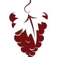Vines & Views Wine Tours