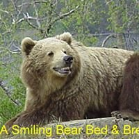 A Smiling Bear B&B