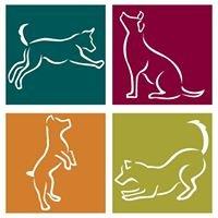 Arizona Veterinary Physical Rehabilitation