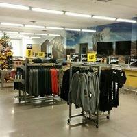 Empire Cat - Mesa Store