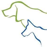 Hunter Canine