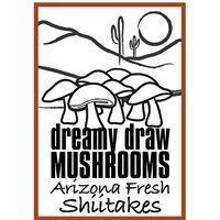 Dreamy Draw Mushrooms