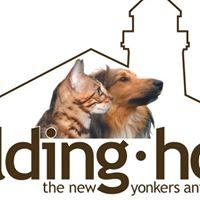 Building Hope for the New Yonkers Animal Shelter