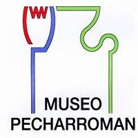 Museo Fundación Pecharromán