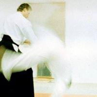 Shoshone Sage Aikido