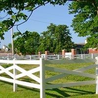 Stephens College Equestrian Studies Program