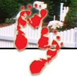 Footsteps to Learning