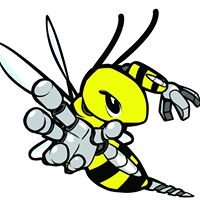 Team 836 The RoboBees