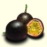 Passionfruit NZ