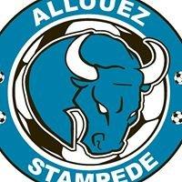 Allouez Stampede