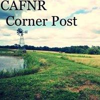 CAFNR Corner Post