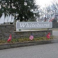 Whitehurst on the Magothy