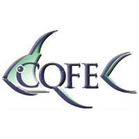 Center for Quantitative Fisheries Ecology [CQFE]