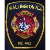 "Wallington Engine Co. 202 ""The Hotshots"""