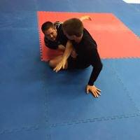 80/20 Brazilian Jiu-Jitsu