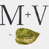 Mint + Varnish