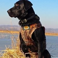 Gateway River Outfitters, LLC