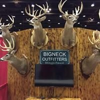 Bigneck Outfitters