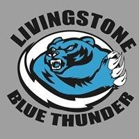 Livingstone College Marching Blue Thunder