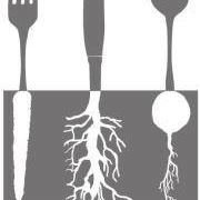 Root of All Food
