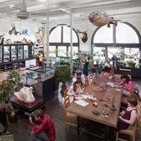 Edna Lawrence Nature Lab @ RISD